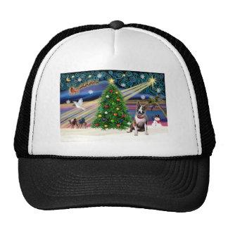 Navidad bull terrier (brindle) gorros
