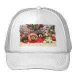 Navidad - caballeros - guisante de olor, lirio, am gorras de camionero