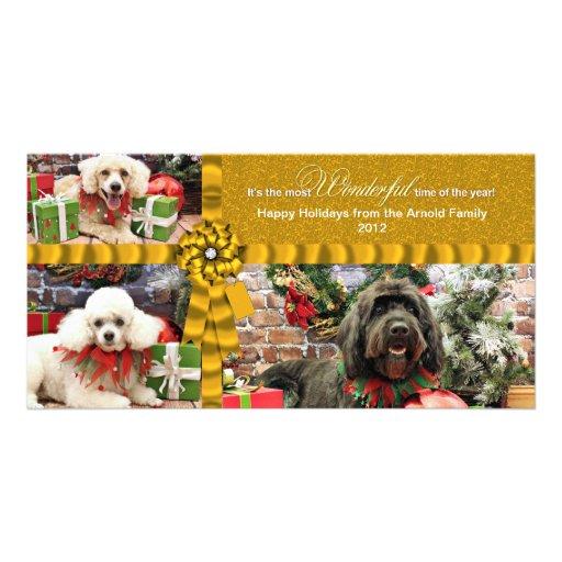 Navidad - caniche Cockapoo - Arnold de GoldenDoodl Tarjetas Fotográficas