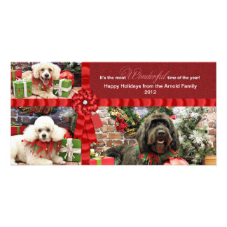 Navidad - caniche Cockapoo - Arnold de GoldenDoodl Tarjetas Fotograficas