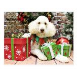 Navidad - caniche estándar - Lucy Postal
