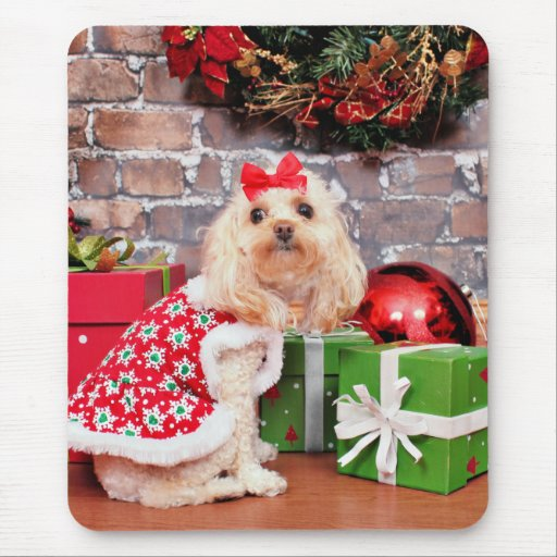 Navidad - caniche - Lulu Mouse Pads