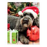 Navidad - caniche - tonelero postal