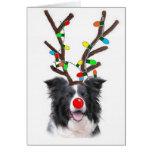 Navidad Card~Rudolph del border collie Tarjetón