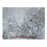 Navidad cardinal postal
