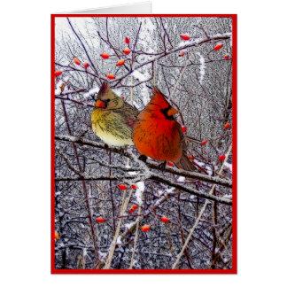 Navidad cardinal tarjeta de felicitación