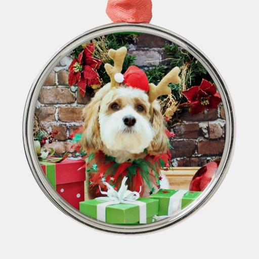 Navidad - Cavachon - máximo Ornamentos De Navidad