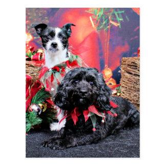 Navidad - ChihShih - Libby y Cockapoo Bailey Tarjeta Postal