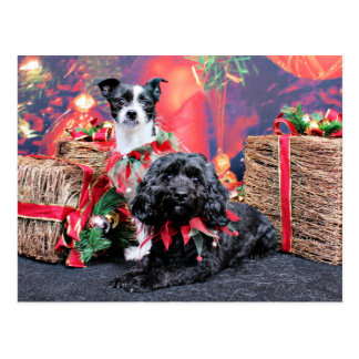 Navidad - ChihShih - Libby y Cockapoo Bailey Postales