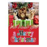 Navidad - chihuahua - azul - muy - yogui tarjeton