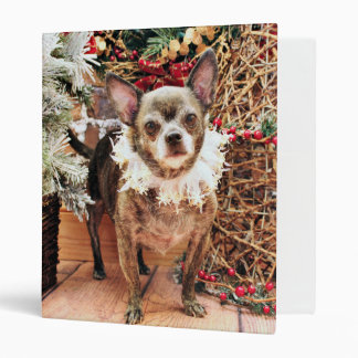 Navidad - chihuahua - Smokey