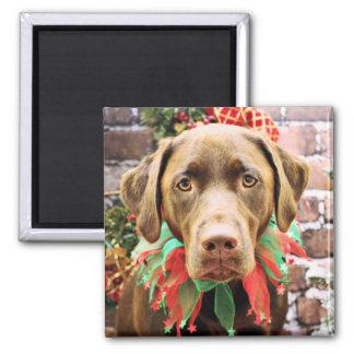 Navidad - chocolate Labrador - Hershey Imán De Frigorífico