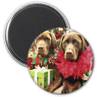 Navidad - chocolate Labrador - Hershey y Zena Imán Para Frigorifico