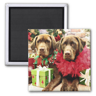 Navidad - chocolate Labrador - Hershey y Zena Imanes De Nevera