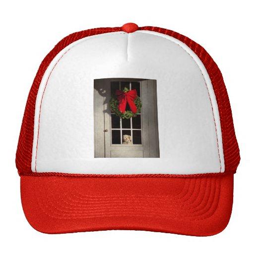 Navidad - Clinton, NJ - perrito del navidad Gorro De Camionero