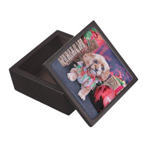 Navidad - Cockapoo - Tessa Caja De Joyas De Calidad