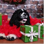 Navidad - cocker spaniel - Maggie Esculturas Fotográficas