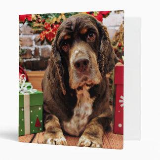 Navidad - cocker spaniel - Remmy