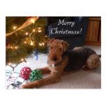 Navidad con la postal de Madeleine