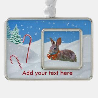Navidad, conejo, nieve, bastones de caramelo, adornos con foto