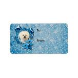 Navidad - copo de nieve azul - Bichon Frise Etiquetas De Dirección