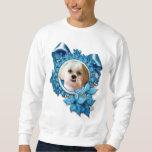 Navidad - copos de nieve azules - Shih Tzu - Sudaderas Encapuchadas