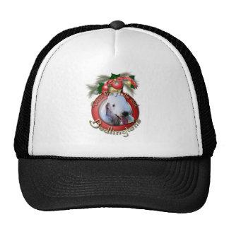 Navidad - cubierta los pasillos - Bedlingtons Gorros Bordados