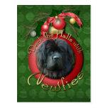 Navidad - cubierta los pasillos - Newfie Postales