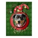 Navidad - cubierta los pasillos - Rotties - SambaP Tarjetas Postales