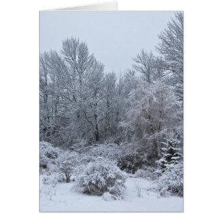 Navidad de blanco puro de Windsor Tarjetón
