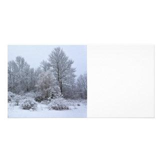 Navidad de blanco puro de Windsor Tarjetas Personales