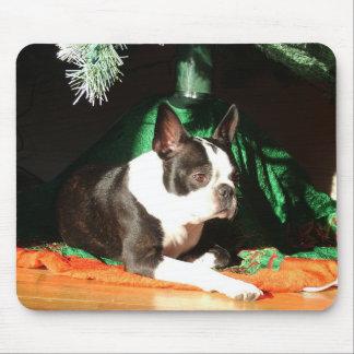 Navidad de Boston Terrier con el gaitero Alfombrillas De Ratón