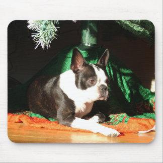 Navidad de Boston Terrier Tapetes De Ratones