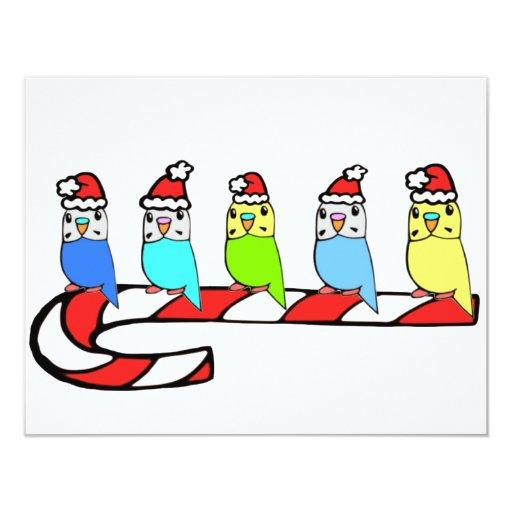 """Navidad de Budgies- Invitación 4.25"""" X 5.5"""""""