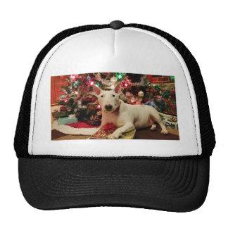 navidad de bull terrier gorras de camionero