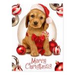 Navidad de cocker spaniel tarjetas postales