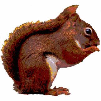 Navidad de la ardilla roja que cuelga el acrílico adorno fotoescultura