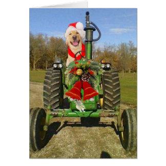 Navidad de la bendición de la granja felicitaciones