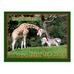 Navidad de la cebra de la jirafa postales