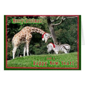 Navidad de la cebra de la jirafa tarjetas