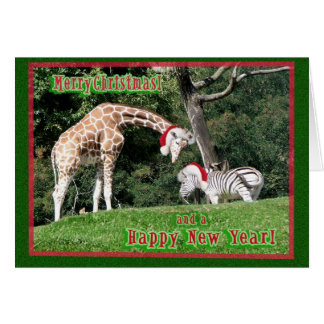 Navidad de la cebra de la jirafa tarjeta de felicitación
