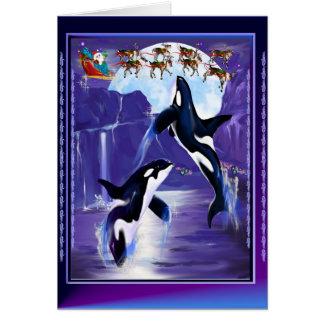 Navidad de la orca tarjeta de felicitación