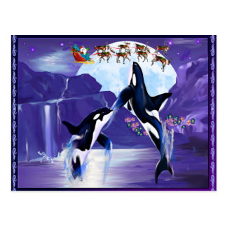 Navidad de la orca tarjetas postales