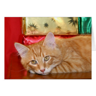 Navidad de la prisa tarjeta de felicitación