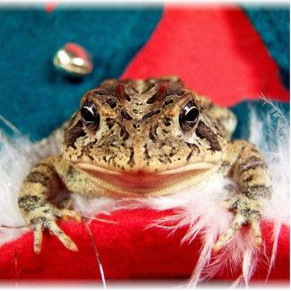 Navidad de la rana, malla, plumas, modelo de santa esculturas fotográficas