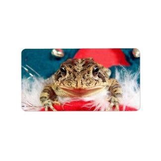 Navidad de la rana, malla, plumas, modelo de santa etiqueta de dirección