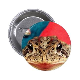 Navidad de la rana, malla, plumas, modelo de santa pin redondo de 2 pulgadas