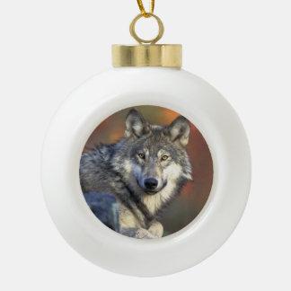 Navidad de los amantes del lobo adorno