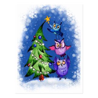Navidad de los búhos azul tarjeta postal