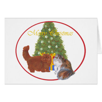 Navidad de los gatos persas del rojo y del calicó tarjeta de felicitación